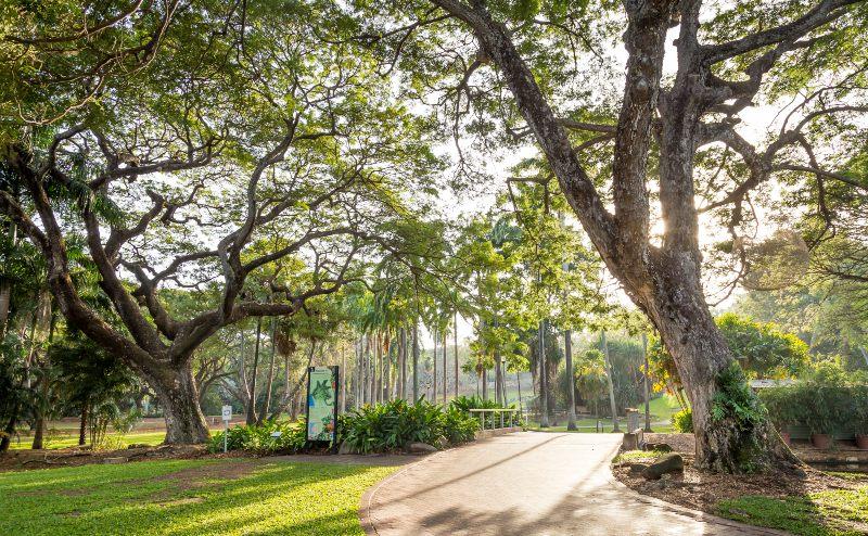 Darwin Botanic Garden Tourism NT Nick Pincott 800
