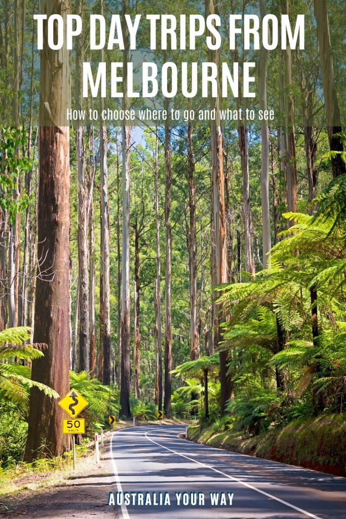 Top Day trips from Melbourne pin