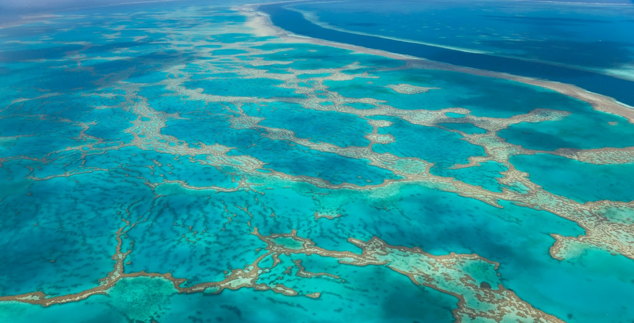 How To Plan Your Great Barrier Reef Holiday