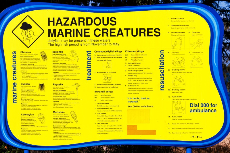 Jellyfish warning sign Queensland