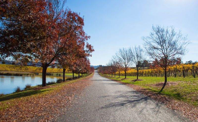 Melbourne Yalla Valley Day Tour Autumn