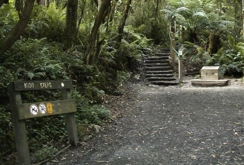 1000 steps walk Melbourne