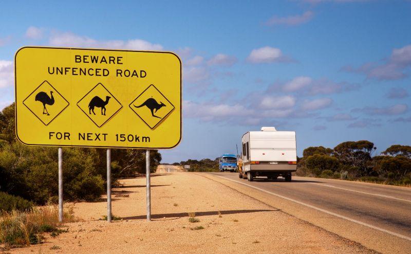 Animal road sign Australia