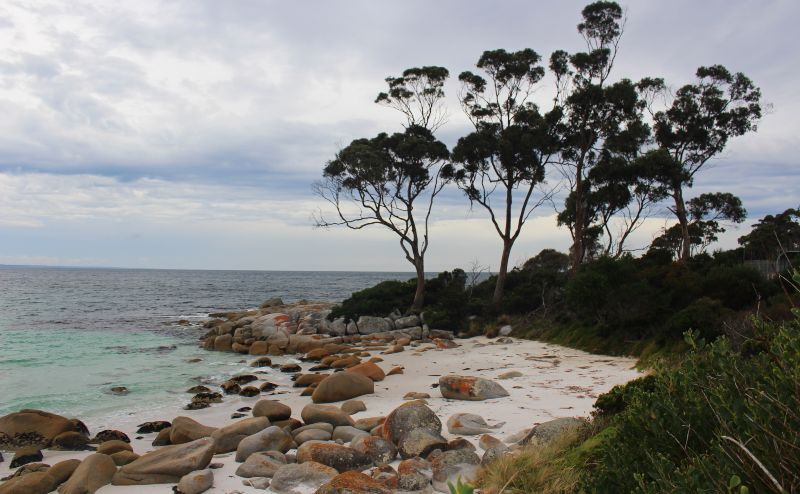 The Bay of Fires is one of the best hikes in Tasmania