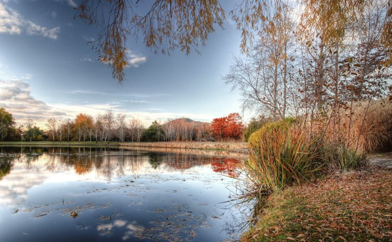 Canberra in Autumn