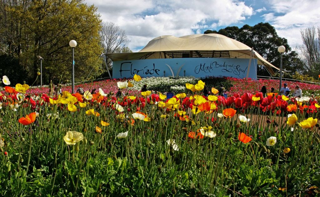 Canberra Travel Guide - Floriade