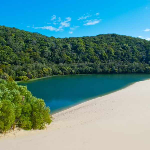 Fraser Island Lake National Park Queensland