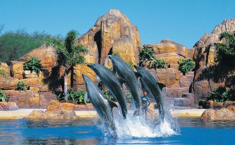 Seaworld on Queensland Gold Coast