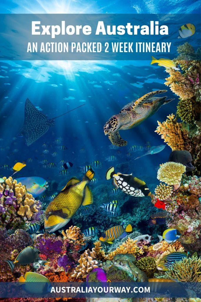 Australia reef itinerary