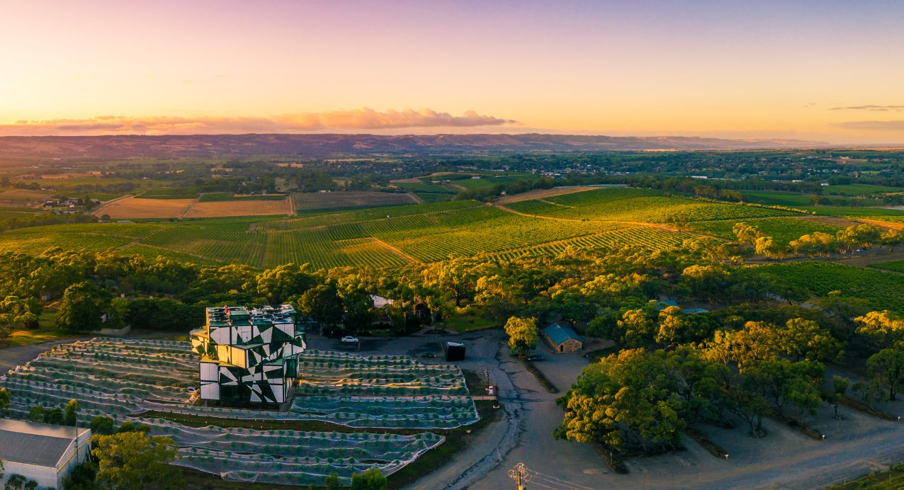 A Guide To The Best Wine Regions Of South Australia
