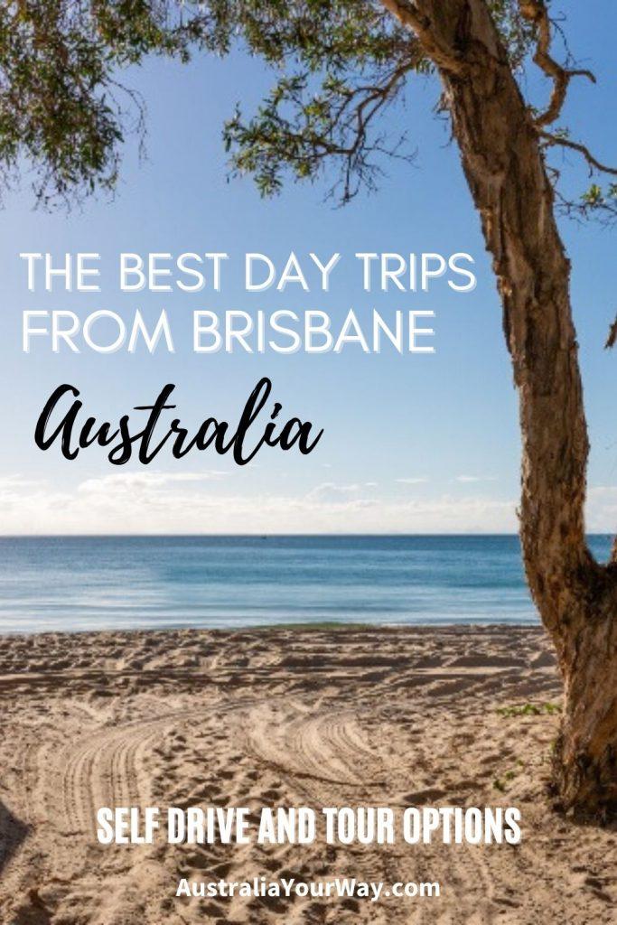 Best Day Trips from Brisbane Australia