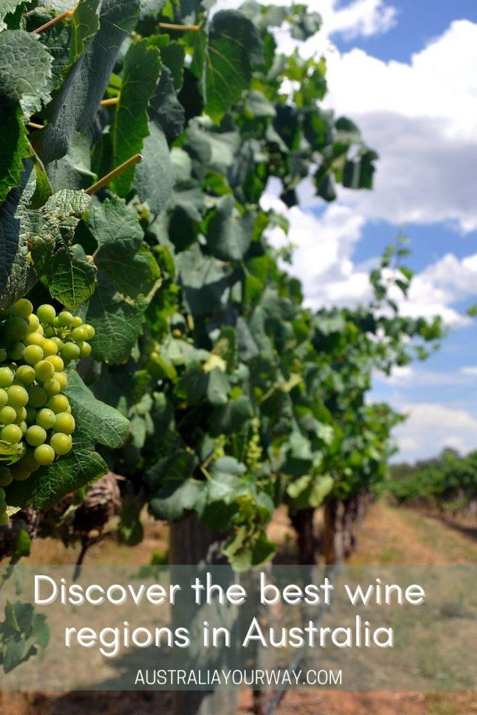 Australias wineries