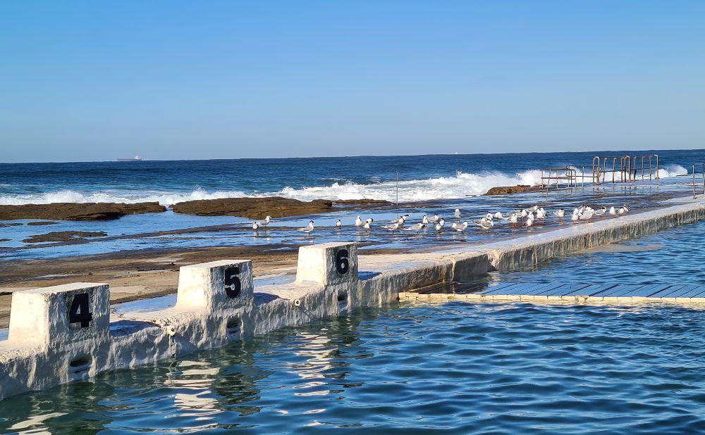 Historic Newcastle Swimming pools