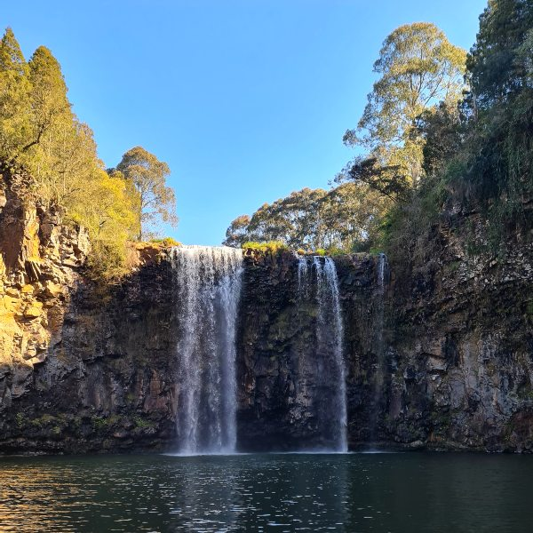 Dangar Falls Dorrigo NSW bottom view