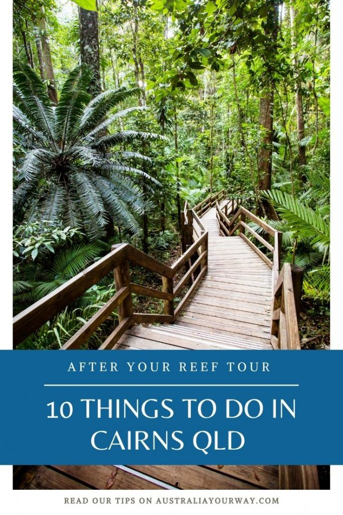 Things to do in Cairns after reef