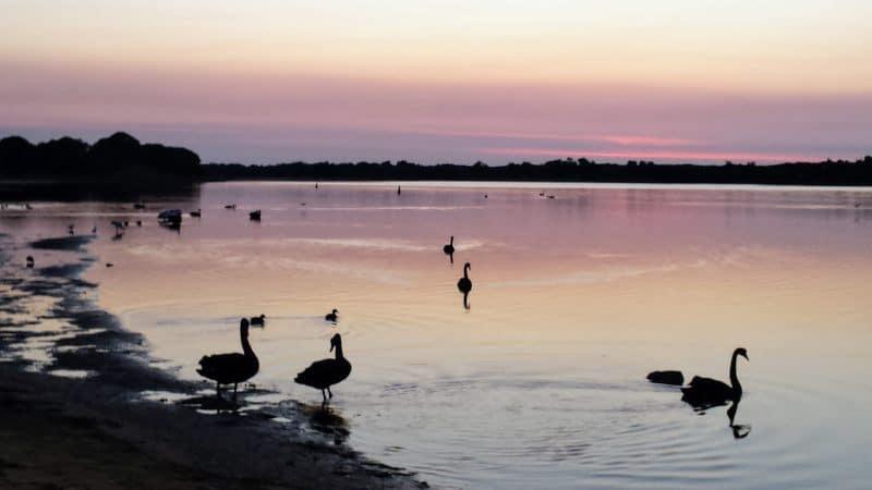 Gippsland Lakes Victoria