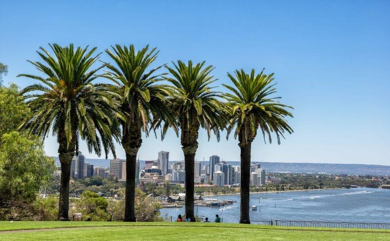 walks in Perth Kings Park