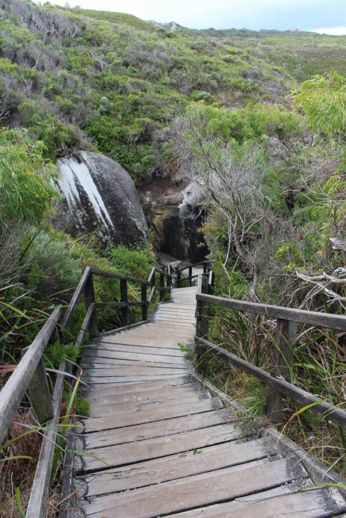elephant cove stairs to beach
