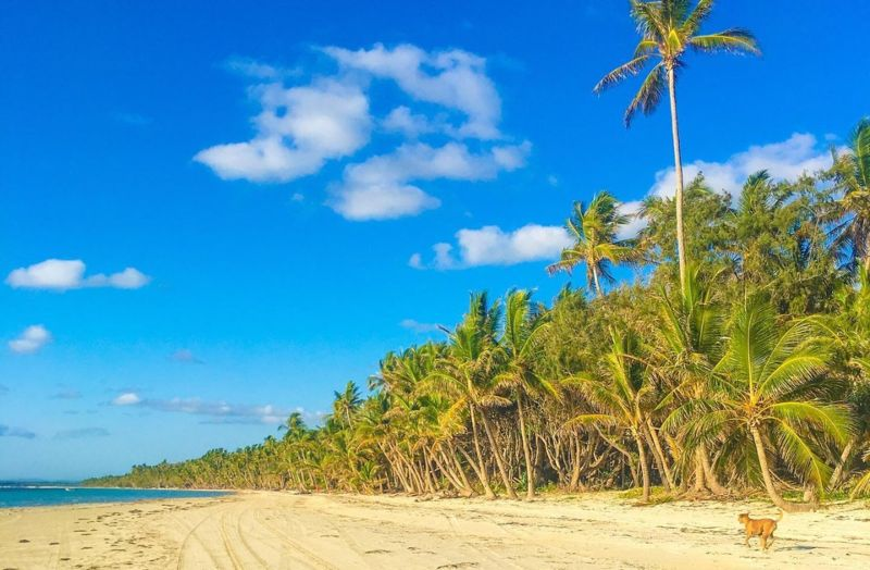 chilli beach Cape York