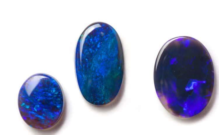 Black Opals on white background