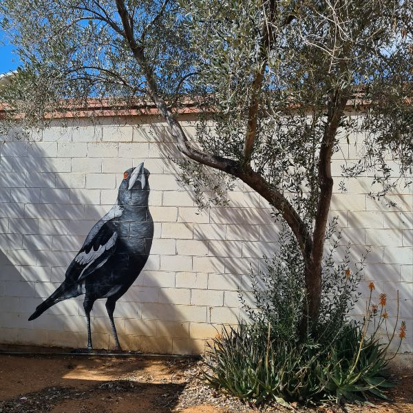 John Murray Black bird mural Lightning Ridge