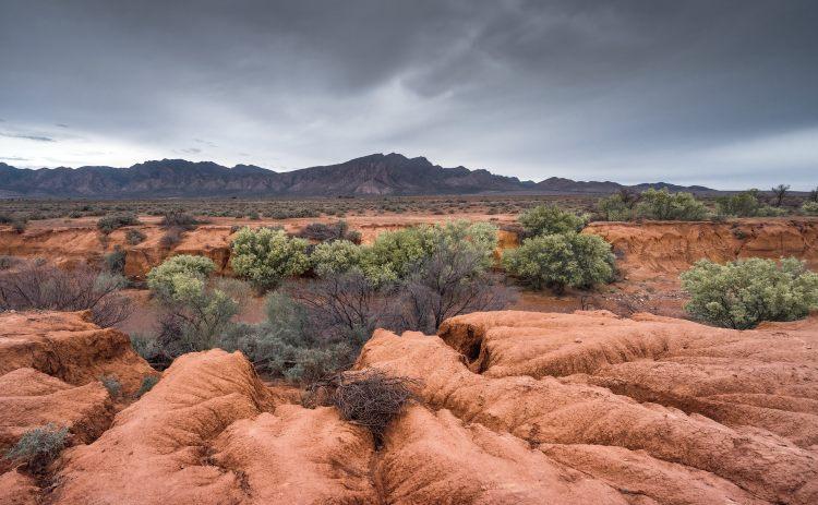 Flinders Ranges in outback Australia