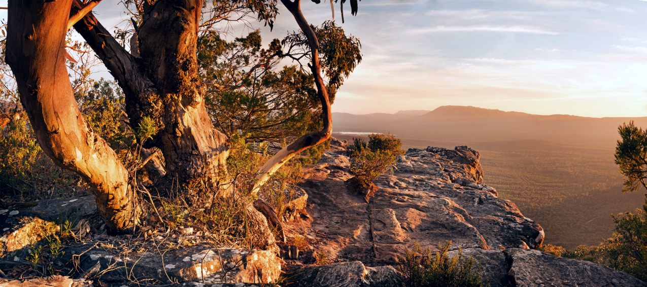 Stunning Australian bush landscape scenic from a mountain top in the Grampians National Park