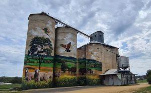 Silo Art in Australia: Exploring the Silo Trails