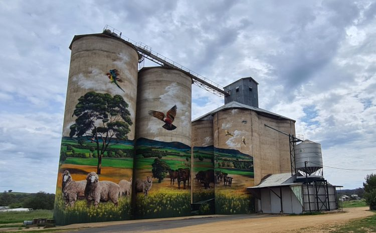 Grenfell Silo painted by Heesco NSW