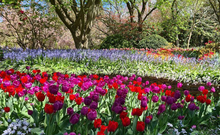 Leura Gardens