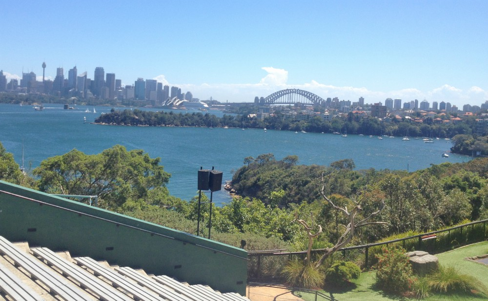 Animals Parks in Syney - Taronga zoo in sydney