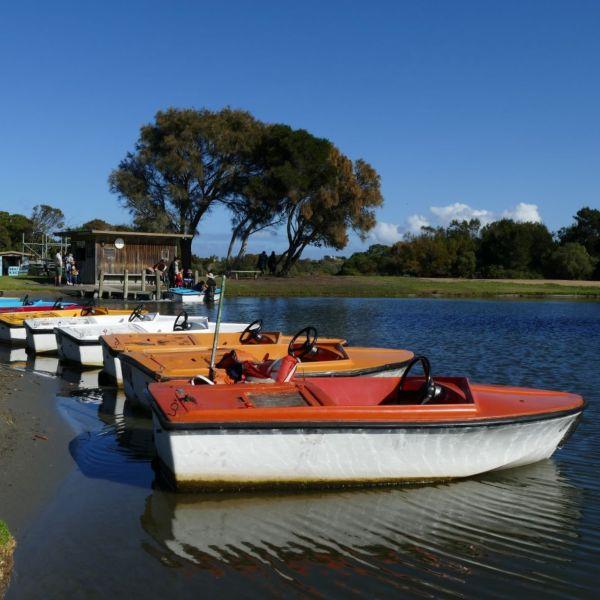 Lake Pertobe Warrnambool Victoria