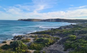 Pennington Bay Beach Kangaroo Island