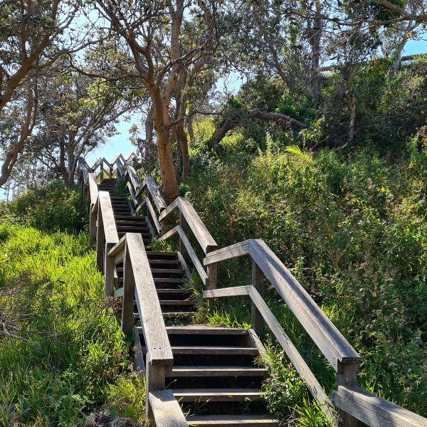 Port Macquarie Coastal walk stairs