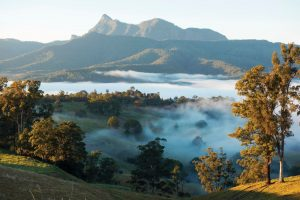 Scenic country views of Mount Warning in the Tweed Range.