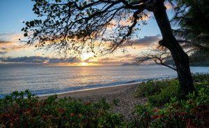 Cape Tribulation Beach Sunset