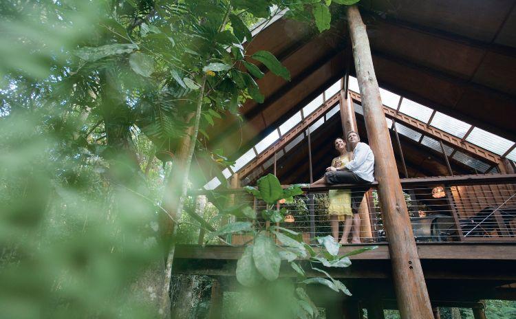 Fur n Feathers Rainforest Tree Houses Tarzali 122445 3