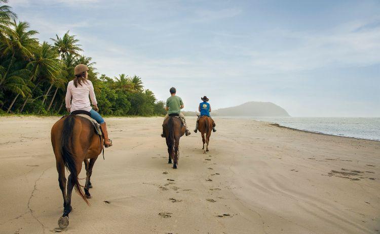 Horseriding Cape Tribulation Queensland Tourism and events142342 23