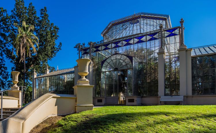 Adelaides Botanic Gardens and the Palm House